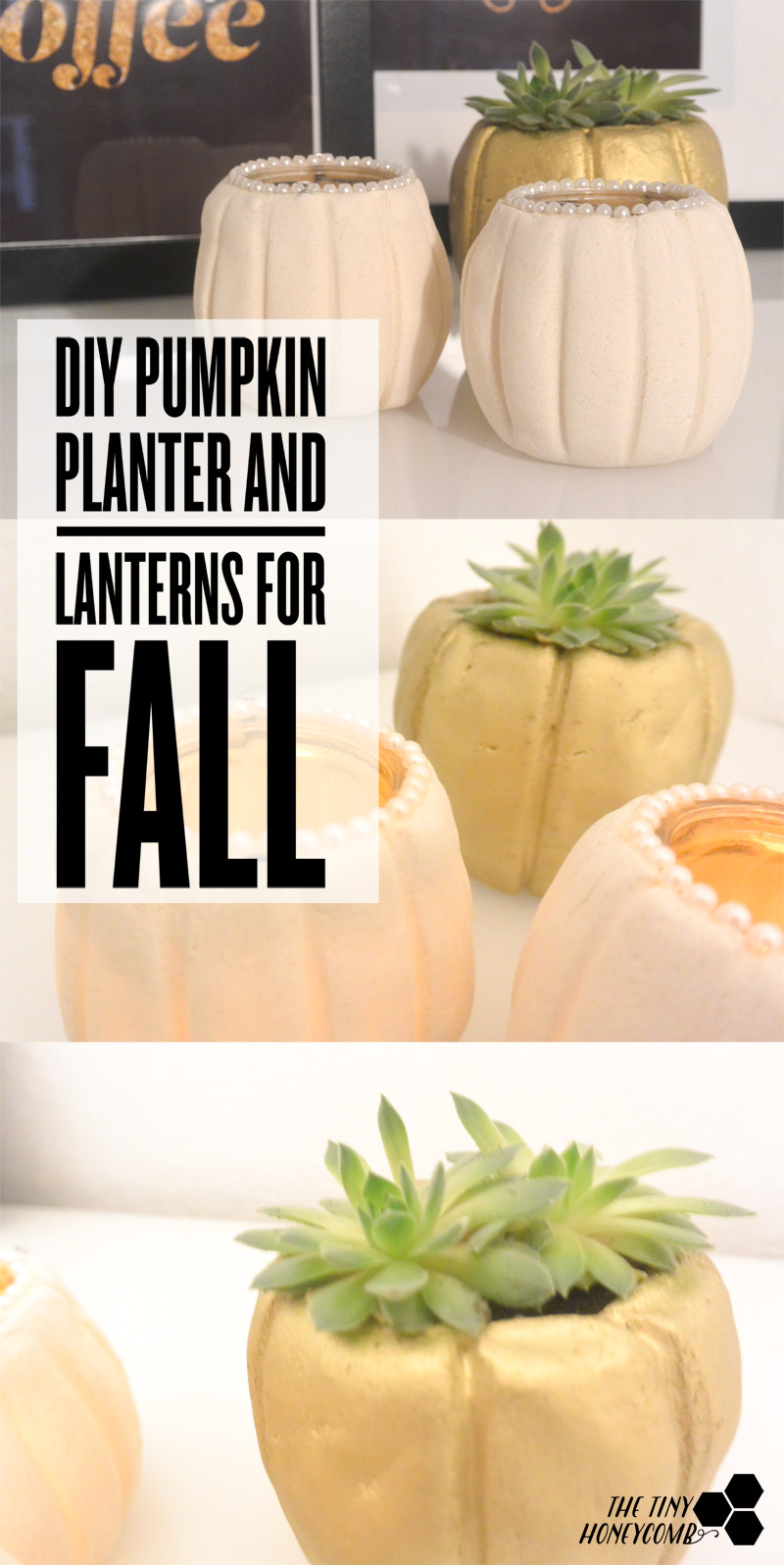 DIY pumpkin planter and lanterns for fall. The tiny honeycomb blog