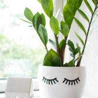 DIY Eyelash flower pot. Cute and easy Project to add to your home decor. How to make a cute flower pot tutorial.